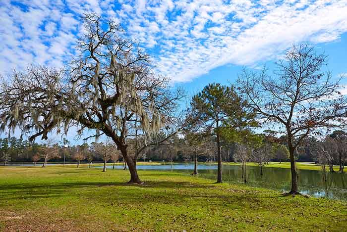 Texas, Park